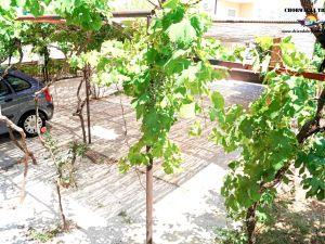 Apartamenty Duje-2181